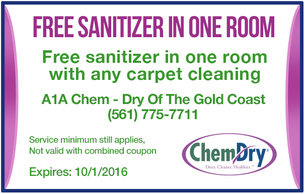 Free-Sanitizer