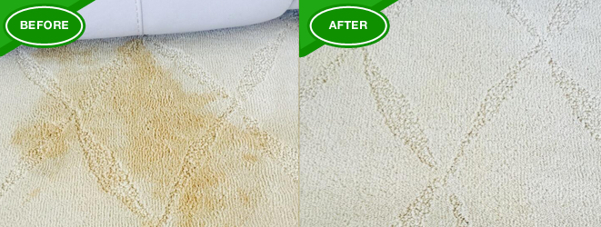 Carpet Cleaning Delray Beach | Chemdry